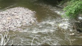 stock-footage-shallow-stream-babbling-brook-in-shade-that-feeds-into-the-delaware-river